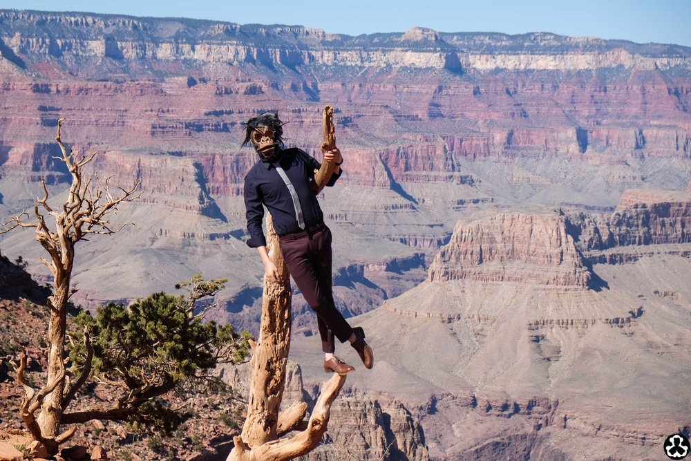 camping-the-grand-canyon-ape-is-dapper-10