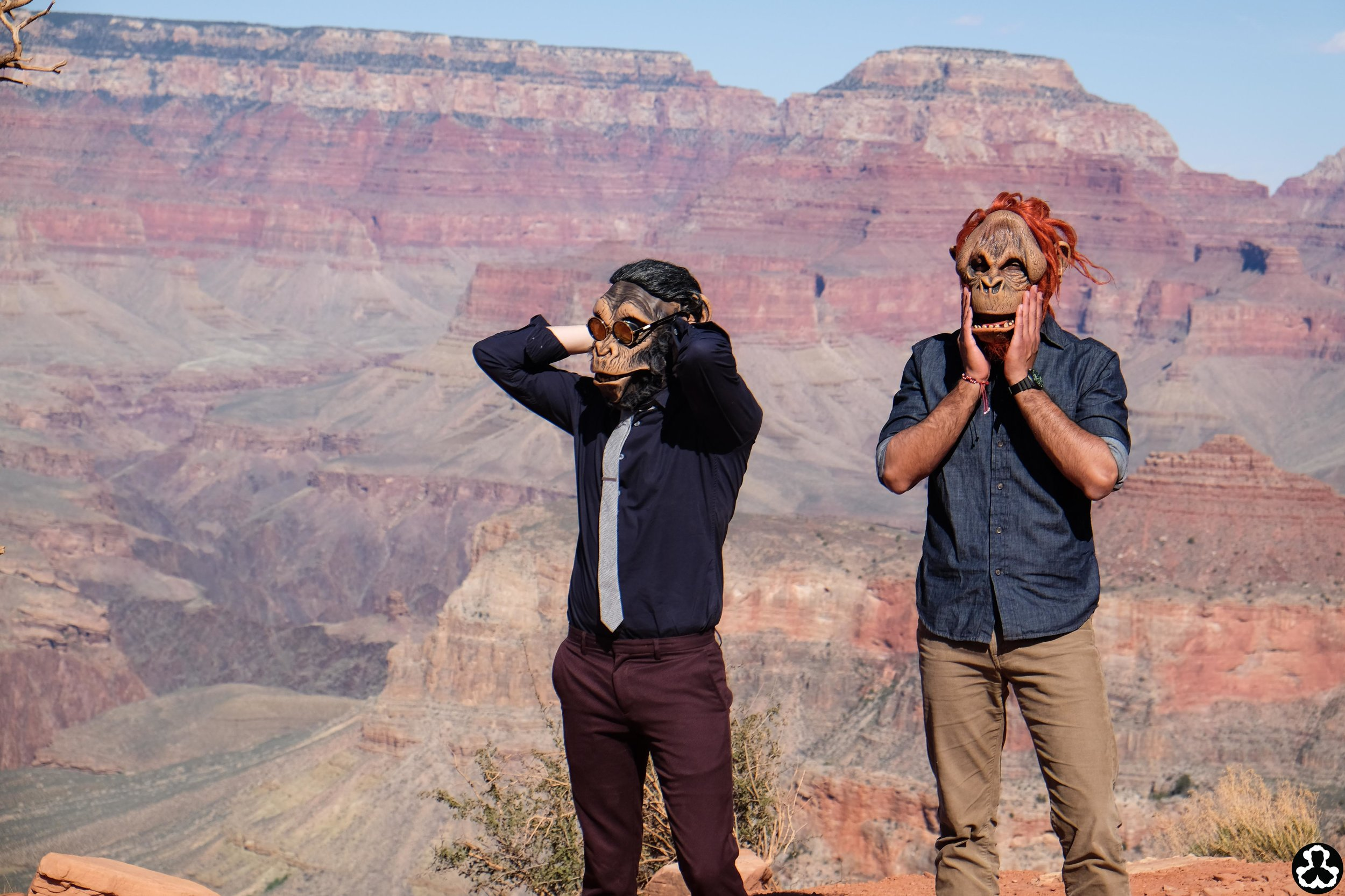 camping-the-grand-canyon-ape-is-dapper-17