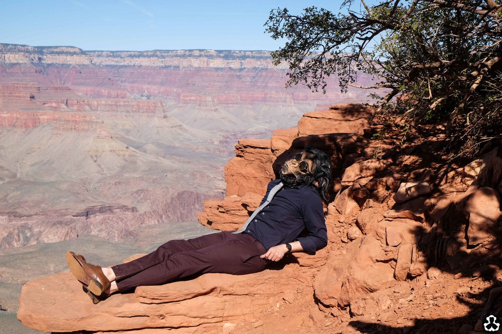 camping-the-grand-canyon-ape-is-dapper-22