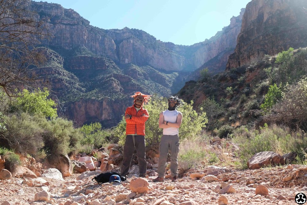 camping-the-grand-canyon-ape-is-dapper-24