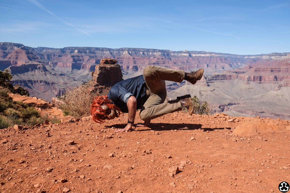 camping-the-grand-canyon-ape-is-dapper-7