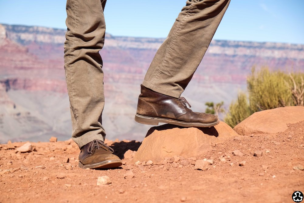 camping-the-grand-canyon-ape-is-dapper-8