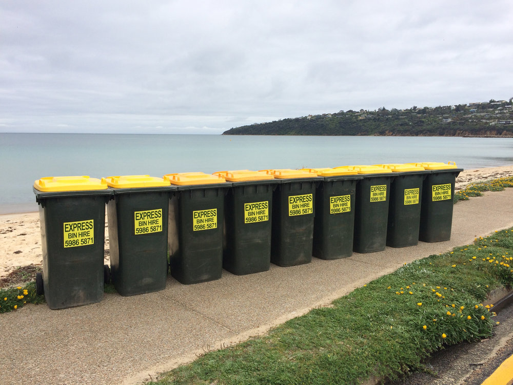 Wheelie bins lined up and ready to go!