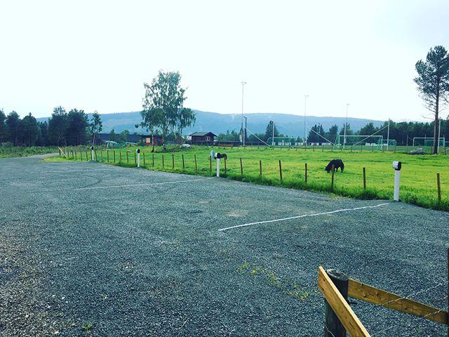 Utvidelse av bobilparkeringen😁 16 plasser👌 #bobil #bobilparkering #landlig #sentrum #berkåkveikro #rennebuetgodtstedåvære