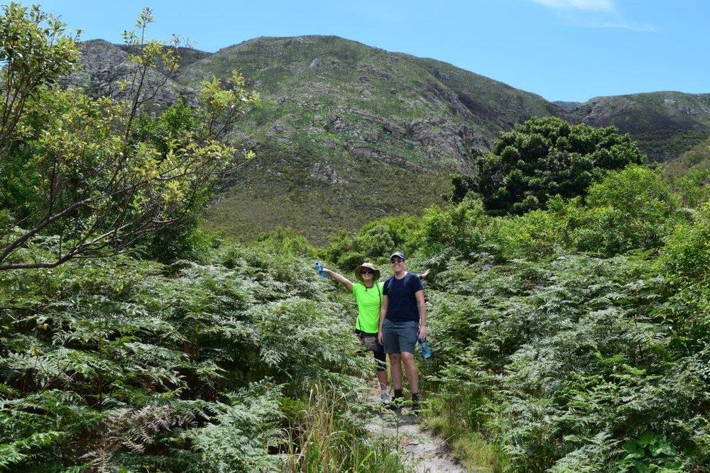Hiking in Fernkloof, near Hermanus