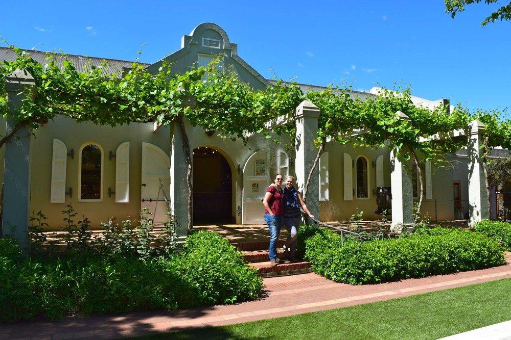 vineyard in stellenbosch.jpg