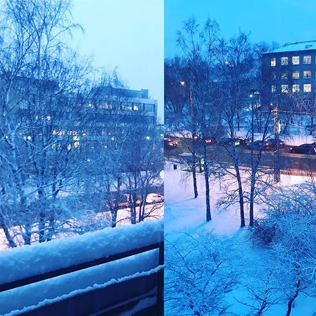 Winter wonderland is here! ❄️ ❄️ ❄️ #snow #winter #january #tallinn