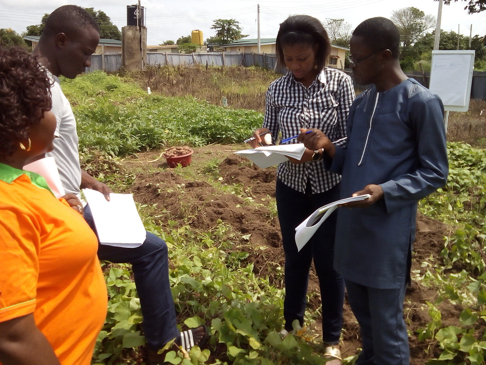 Stephanie Okpere in Sweetpotato field during the ToT Training, ARMTI, Ilorin.