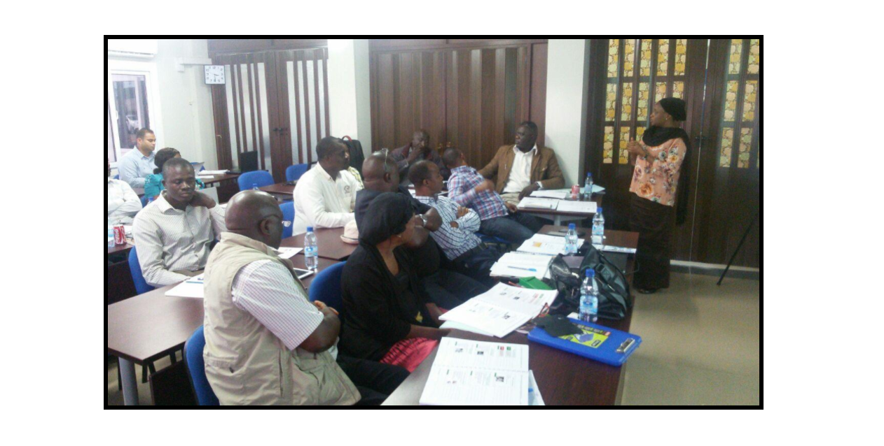 AFENET facilitator leading a group session (Nov 2016, Freetown, Sierra Leone)