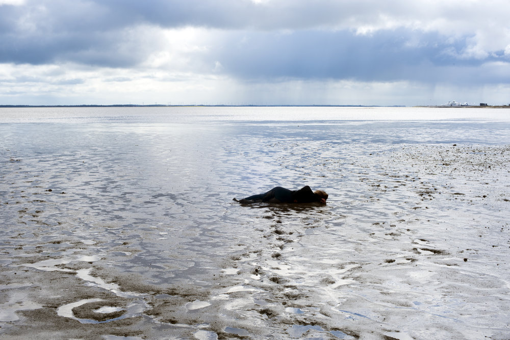 Rømø-forår-vandet stiger.jpg