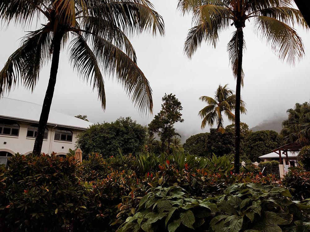 Australia, Palm Cove, RTW, Round the World, Itinerary