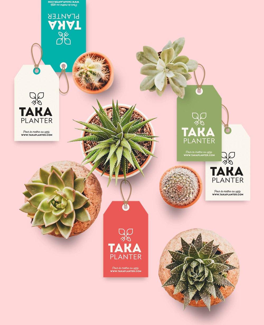 Identité boutique de vente en ligne - Taka Planter