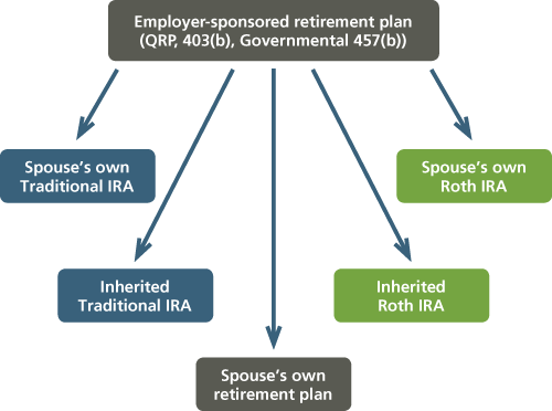 Spouse Beneficiary Rollovers.png