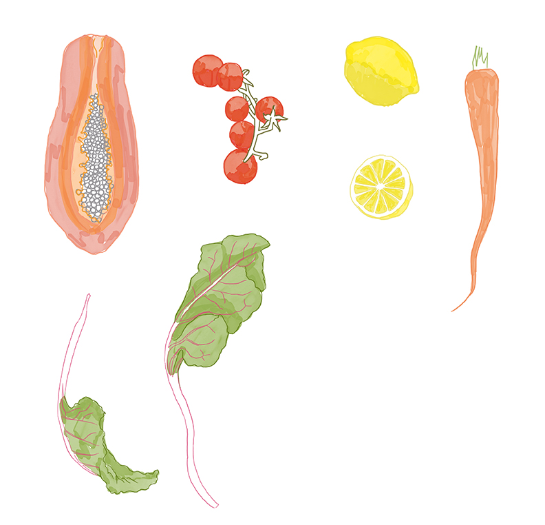 illustration_recipe_v02-web.jpg