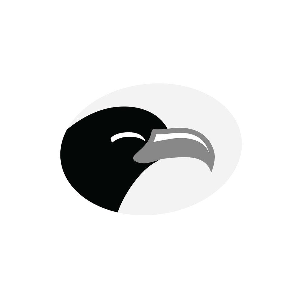 blackhawk_logo3.jpg