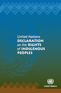united_nations_declaration_rights_of_indigenous_peoples.png