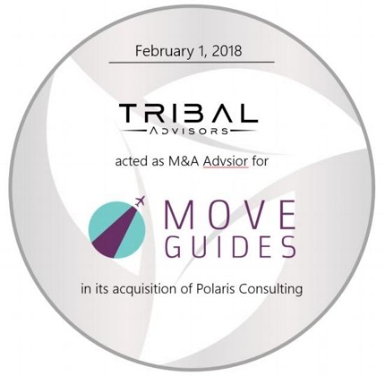 MoveGuides TS.JPG