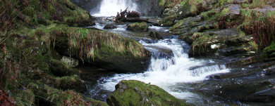 wearegreen-waterfall
