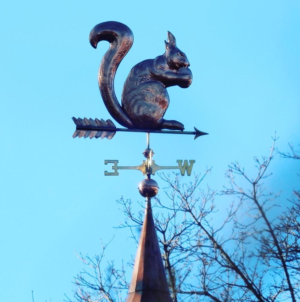 Squirrel_Hill_Urban_Coalition___squirrelhillurbancoalition__•_Instagram_photos_and_videos 9.png