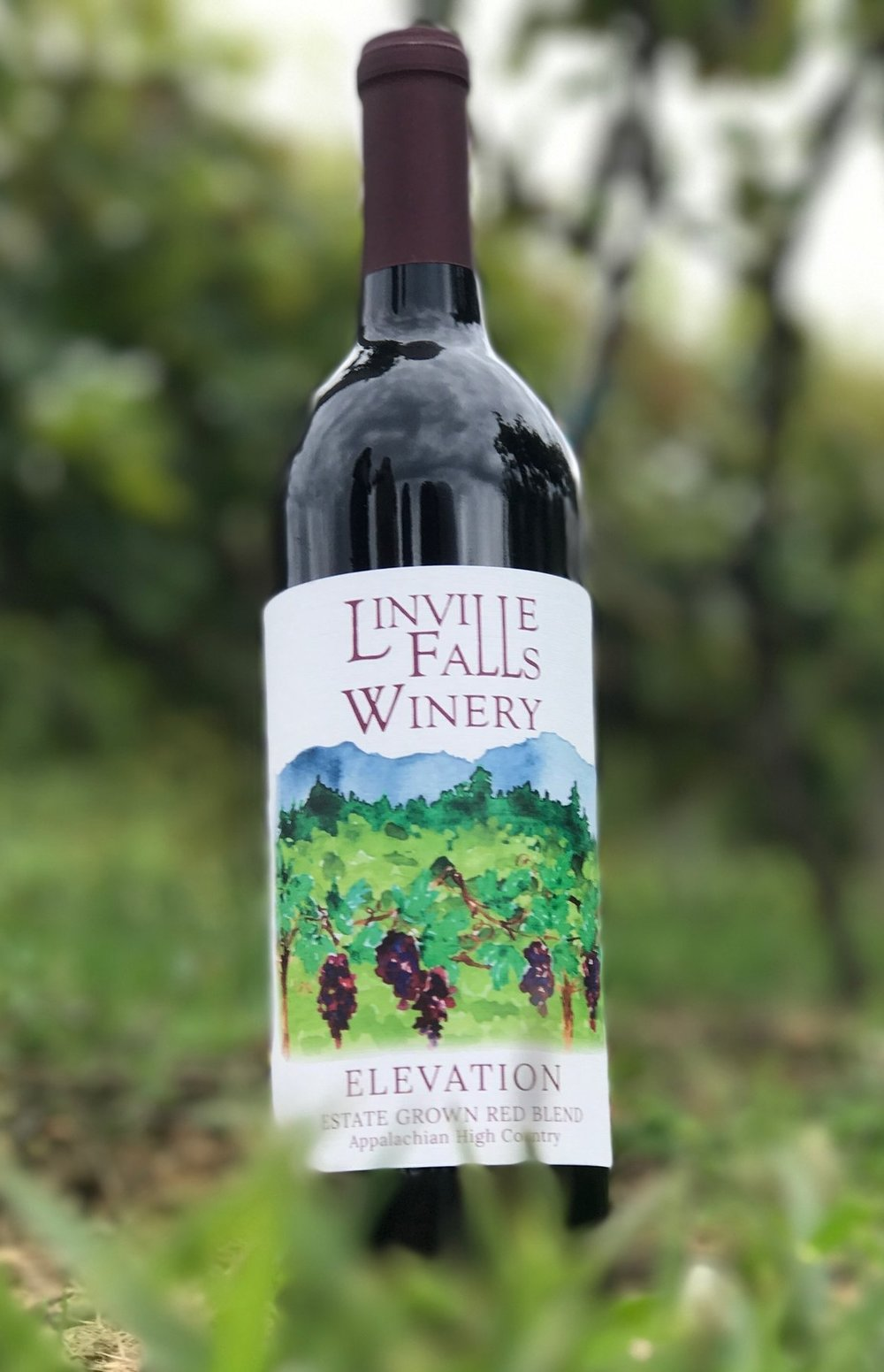 Elevation - Estate Grown at an Elevation of 3200', these red grapes come together in our Winemaker's Blend to create a truly unique wine. You'll encounter flavors of earthy herbs, subtle spice, and berries in this house favorite.
