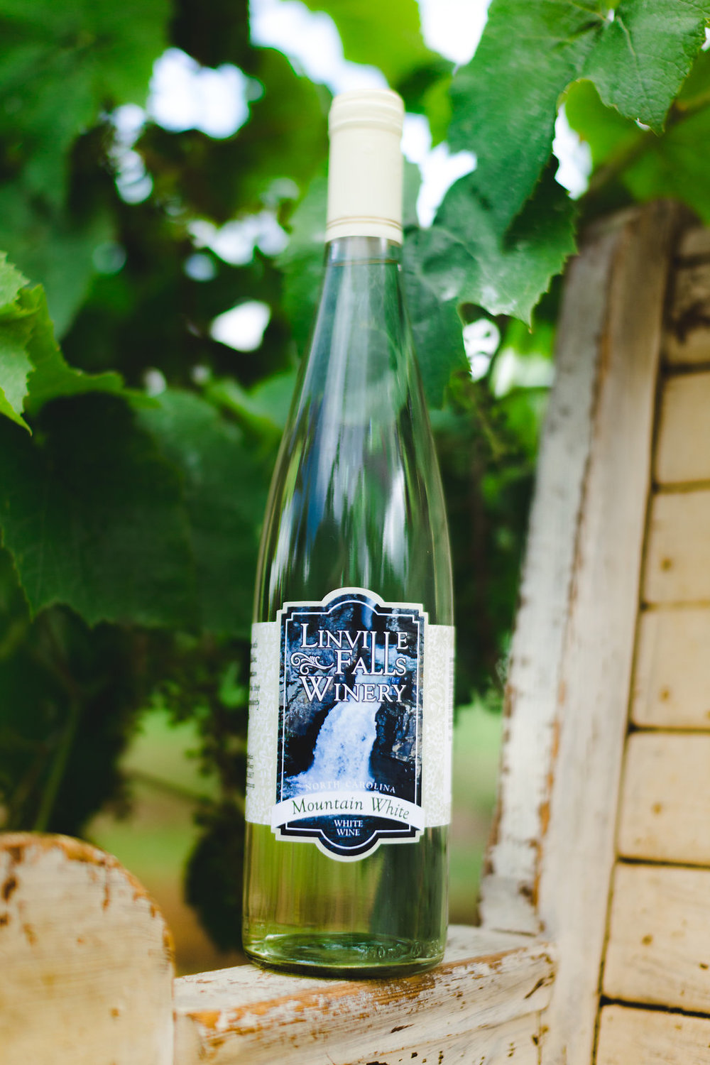 Mountain White - When harvest comes around for our estate grown Seyval Blanc,you can't resist the urge to pluck a few of these sweet, flavorful grapes straight to your mouth!Mountain White retains the bright, fresh-picked taste of these grapes with notes of peach and delightful tropical flavor.