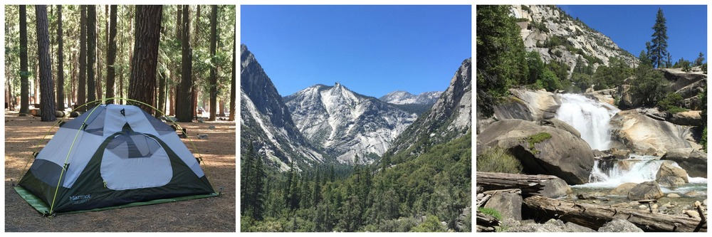 Kings Canyon National Park 1.jpeg