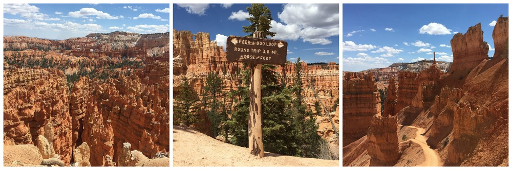 Bryce Canyon National Park 1.jpeg