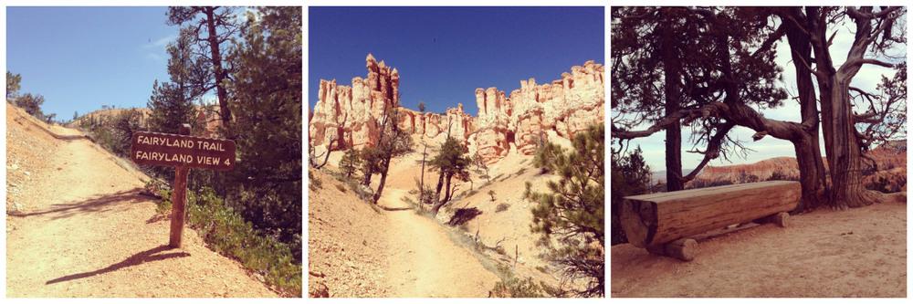 Bryce Canyon National Park 2.jpeg