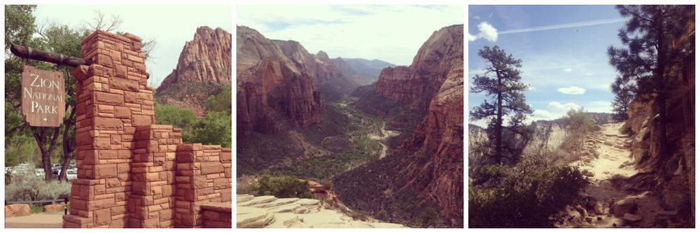 Zion National Park 1.jpeg