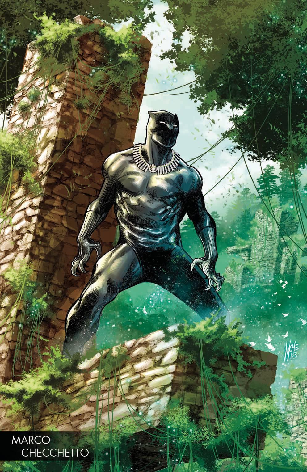 black panther #170.jpg