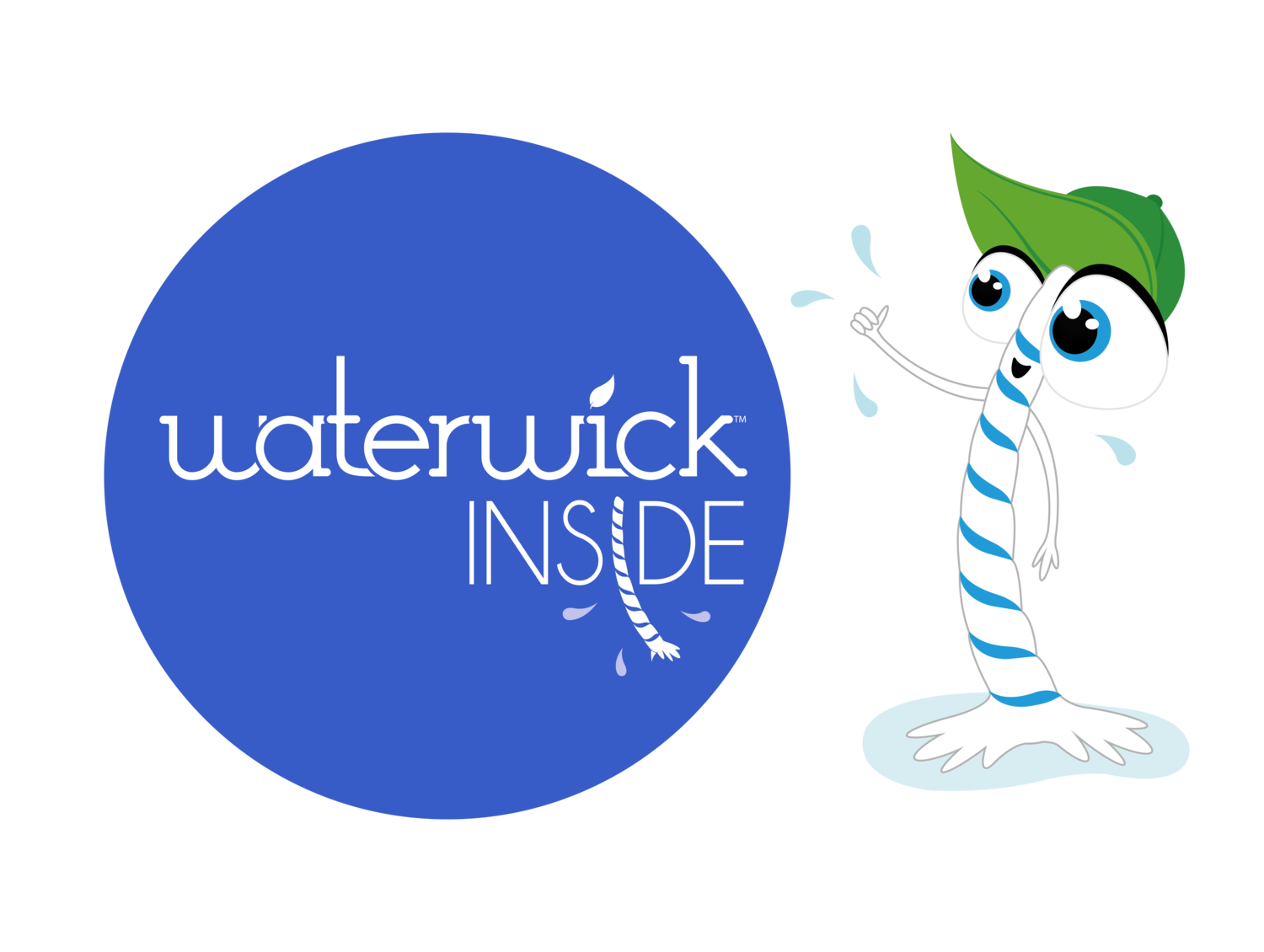 WaterWick Inside