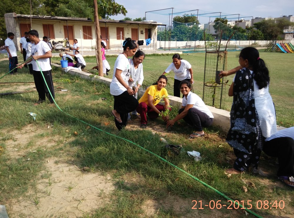 Tree Plantation Camp on International Day of Yoga , Jun 2015
