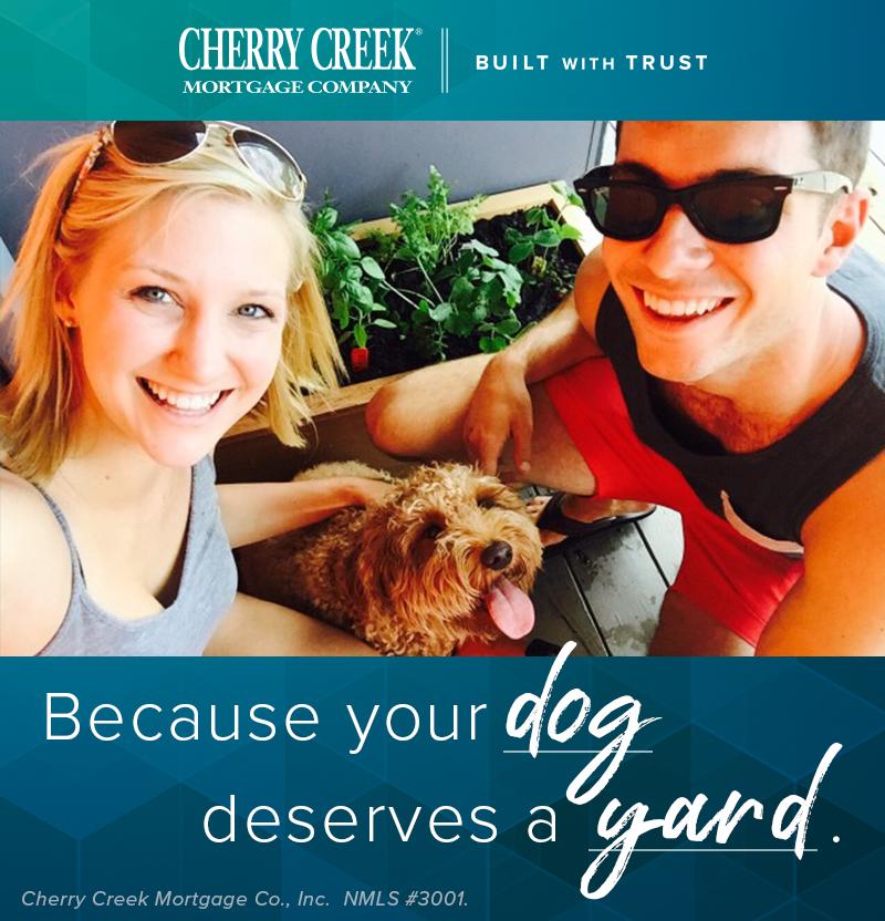 CCMC-SocialMedia-Dogs.jpg