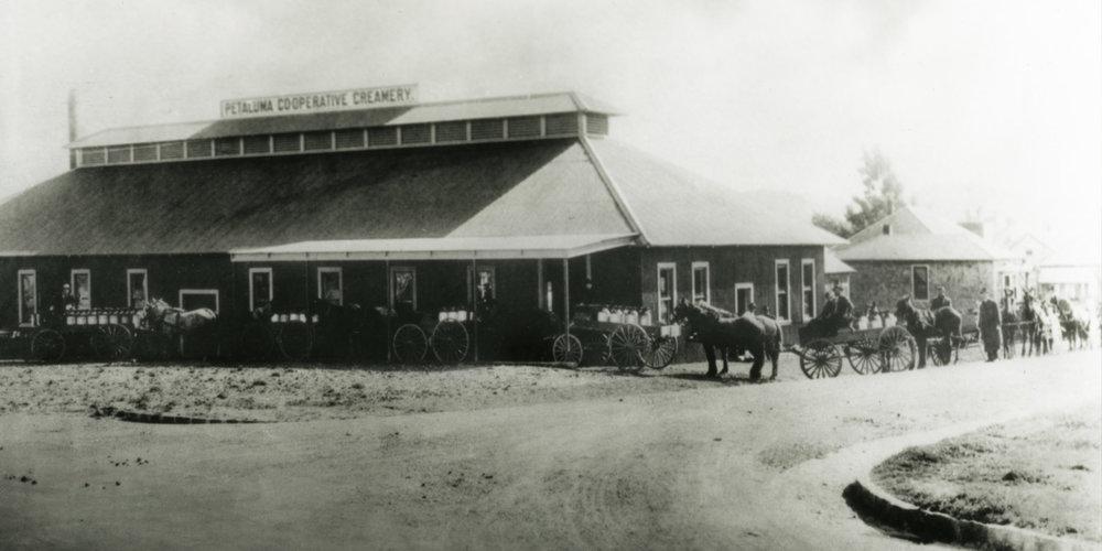 PetalumaCreamery_1914.jpg