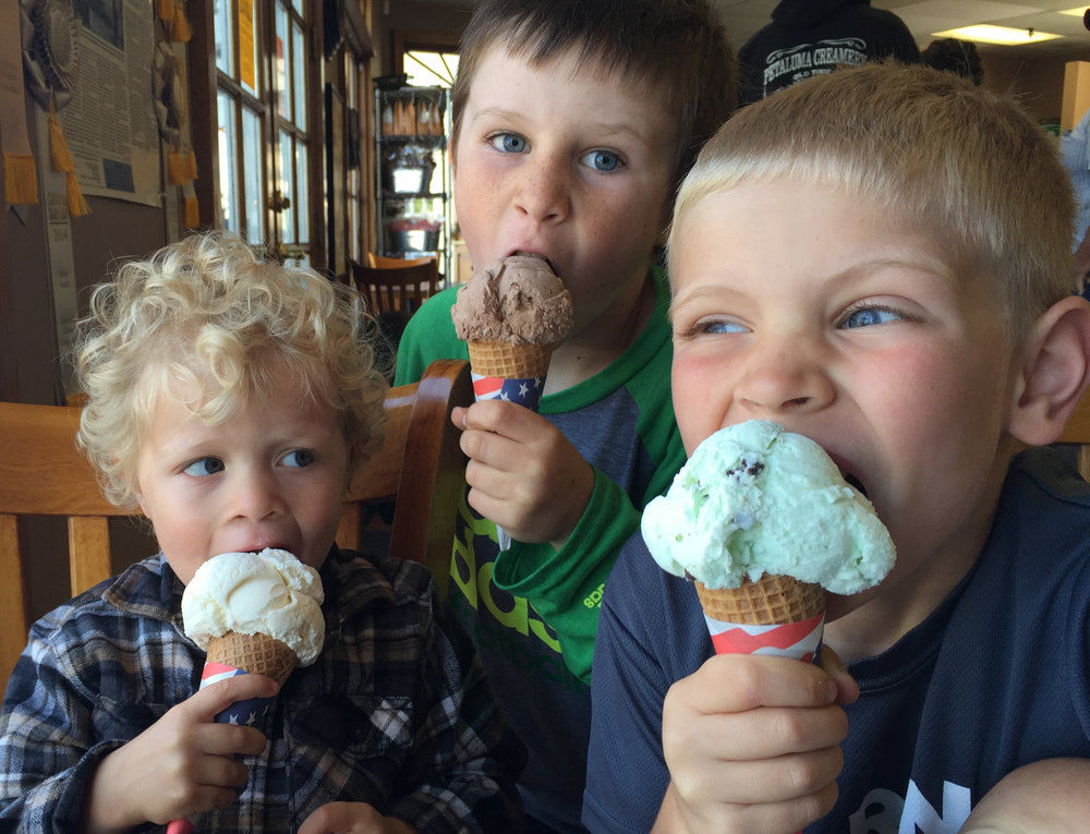 Petaluma Creamery Ice Cream
