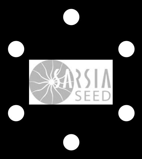sarsia.png