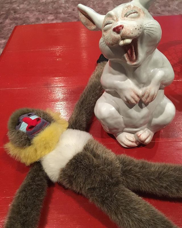 Dead rally monkey.  shelleyjoygilbert.com.  #rally #monkey #bunny #laughing