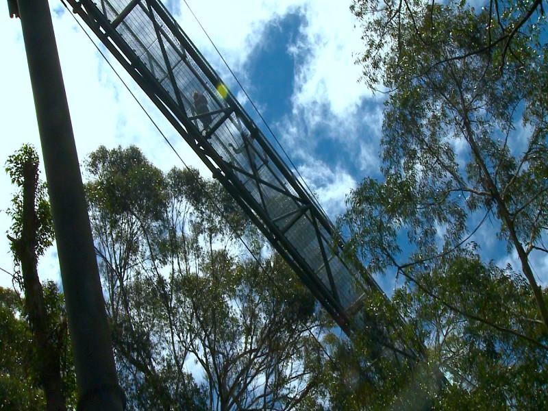 從下面望上去,棧道真有直入雲霄的感覺。