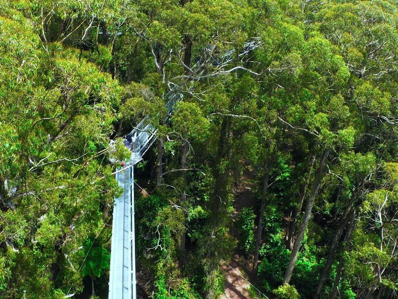 棧道高二十五米,可是,從更高的騎士塔上望下去,它又成了「矮子」了。