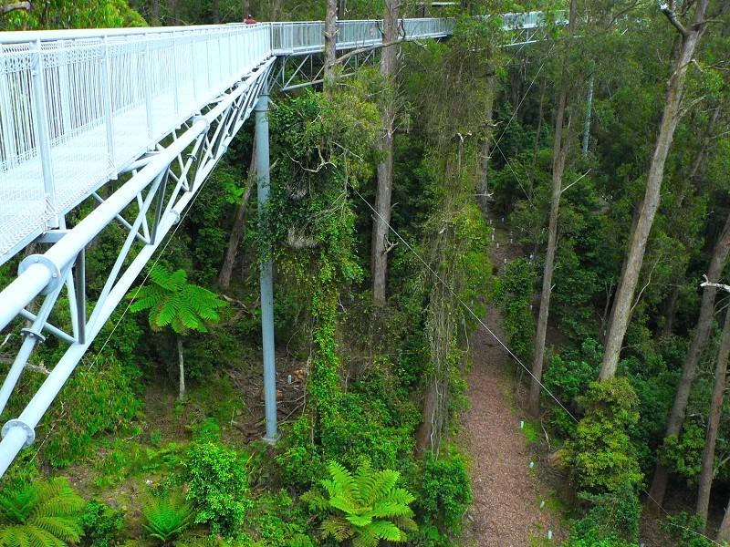 棧道一共只有十個立柱支撐,以儘量減少對環境的破壞。