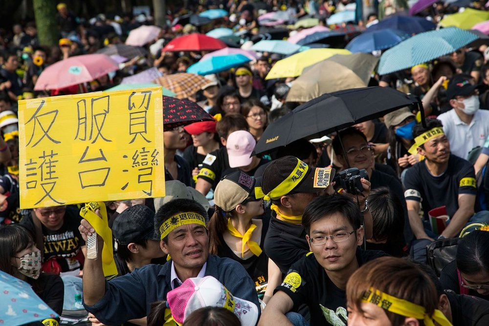 A protester holds up a sign as over two hundred thousand people rally opposing the contentious cross-strait service trade agreement with China in Taipei, Taiwan, on March 30, 2014. (Lam Yik Fei/Getty Images)