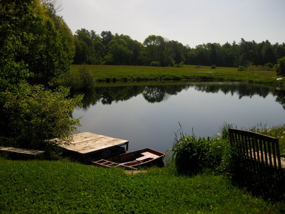 This is a really pretty lake right behind the house with spring water in it. I haven't gone swimming yet but I will soon!
