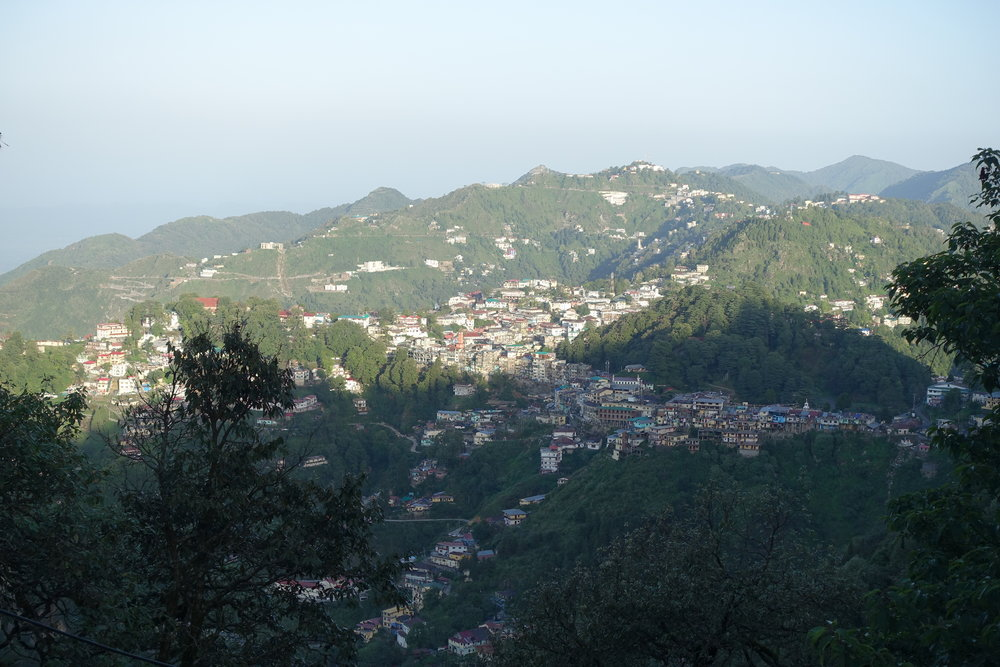 The town of Mussoorie, home to many shops, street dogs, and friendly people