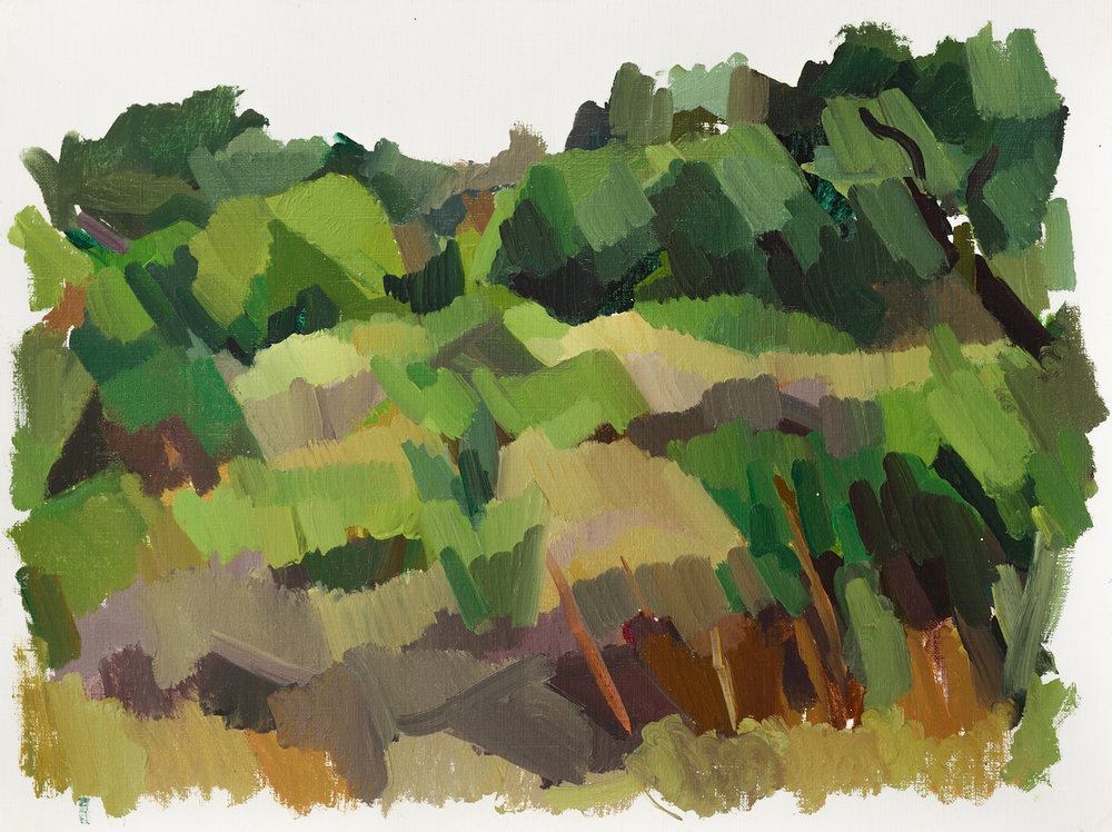 """Evoramonte,   Oil on Paper, 12"""" x 16,"""" 2014.  Available for Purchase."""