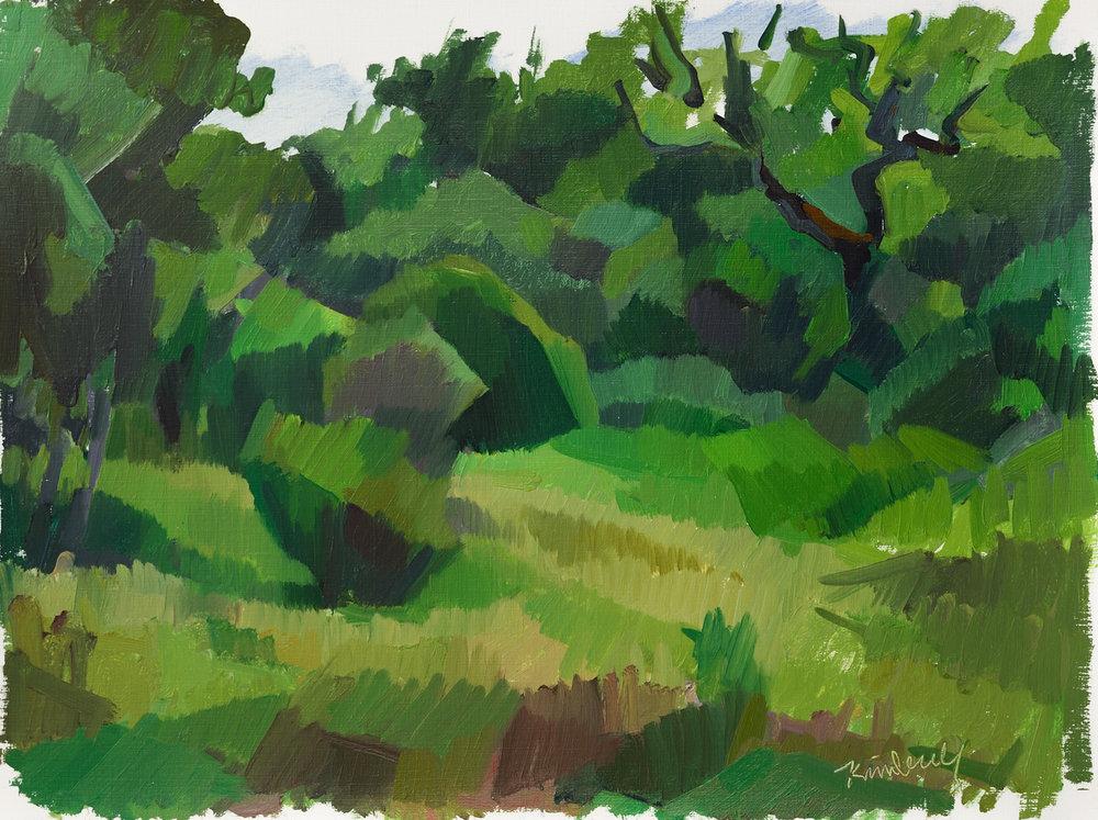 "Evoramonte (green field i),   Oil on Paper, 12"" x 16,"" 2014.  Private Collection."
