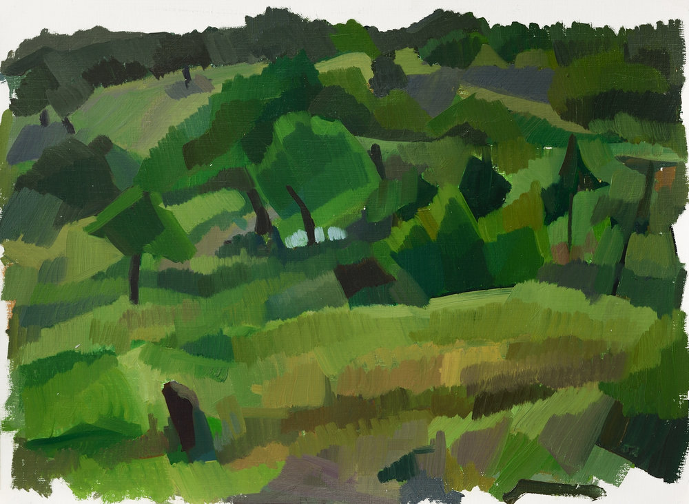 """Evoramonte (green field ii),   Oil on Paper, 12"""" x 16,"""" 2014.  Available for Purchase."""