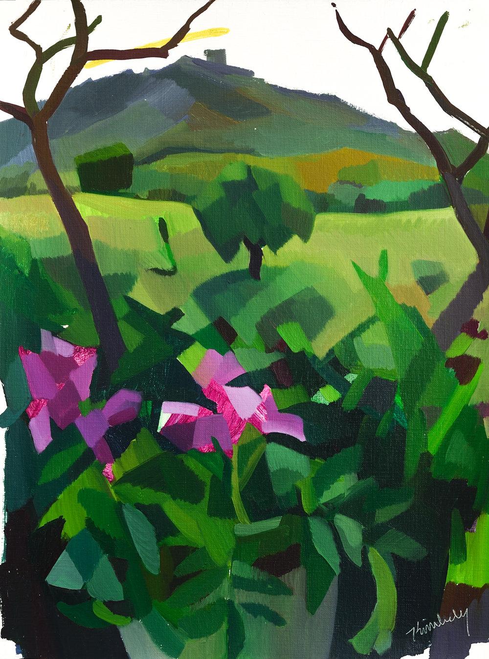 "Flores, Alentejano,   Oil on Paper, 16"" x 12,"" 2014.  Private Collection."