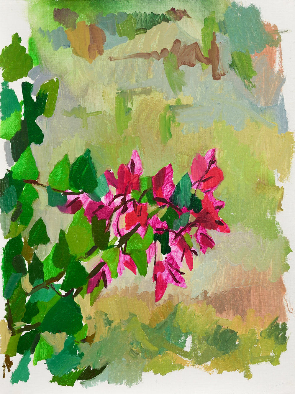 """Bougainvillea,   Oil on Paper, 16"""" x 12,"""" 2014.  Available for Purchase."""