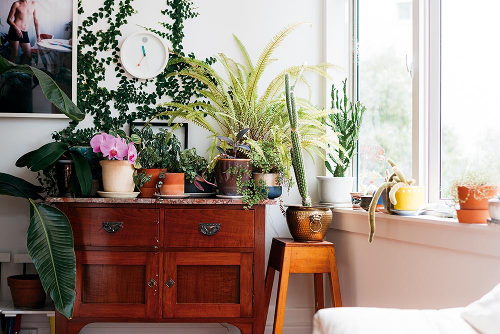 Living Room_pp79_sml.jpg