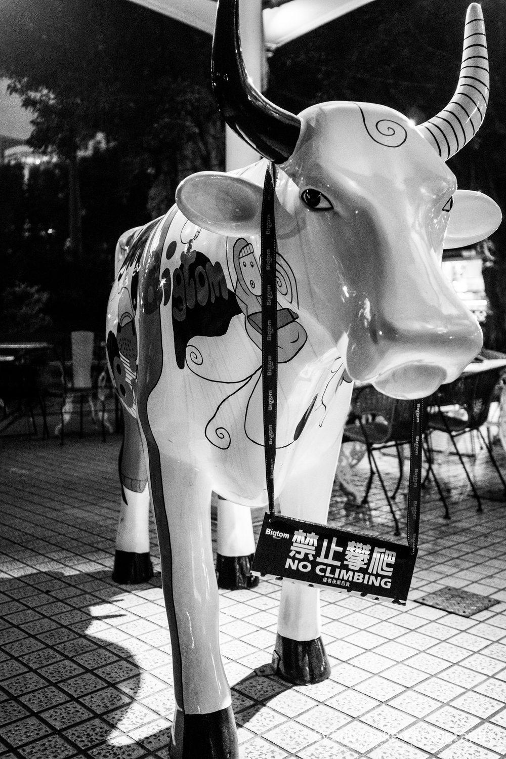 the resident cow at Tom&Toms. f1.8, ISO 1600, 1/25, 35mm